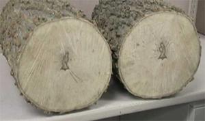 jesus-firewood